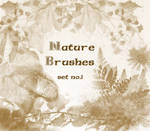 Nature Brushes set.1