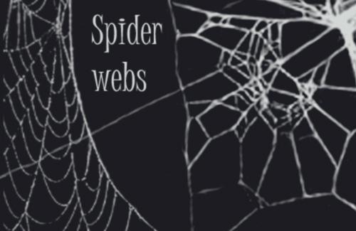 Spider web brushes