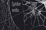 Spider web brushes