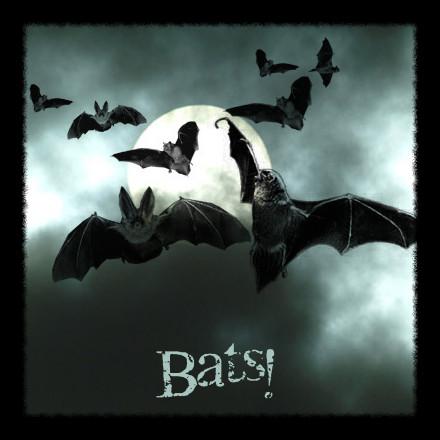 Bats - PS Brushes