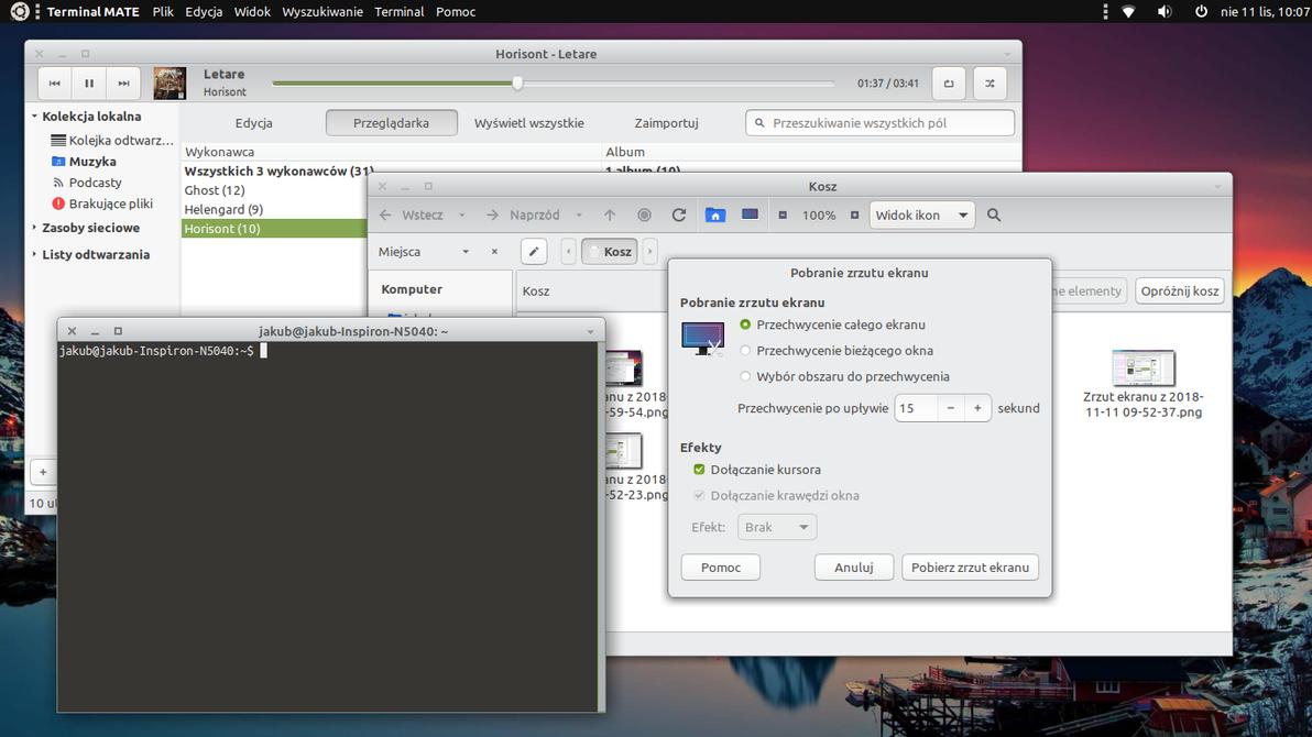Radiant-MATE-Silver for Ubuntu-MATE 18.04 by Dolsilwa