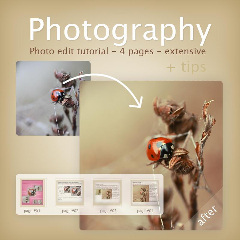Photography edit tutorial II by meganjoy