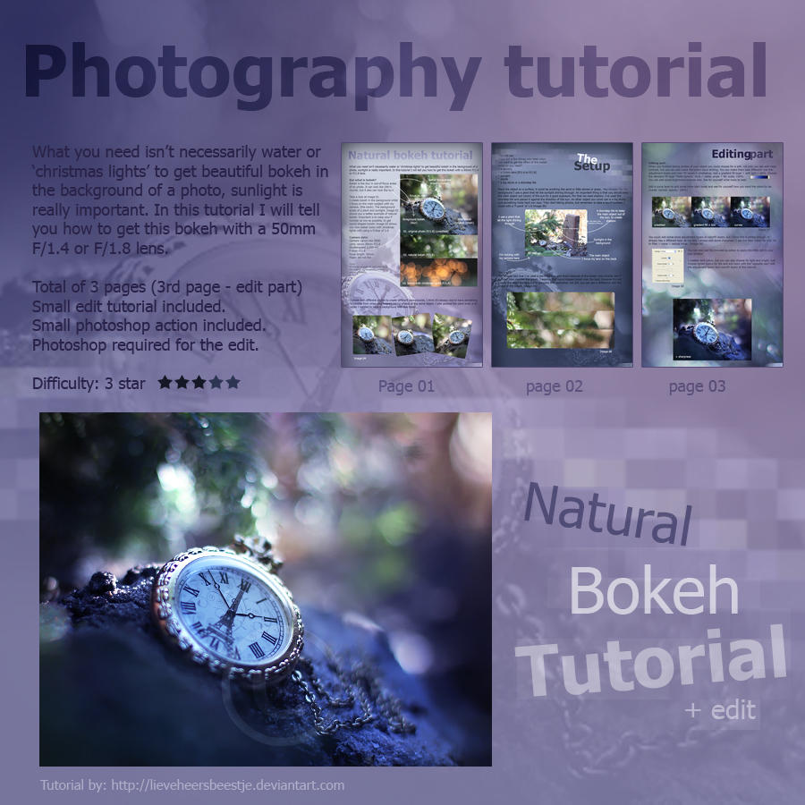 Photography natural bokeh tutorial by lieveheersbeestje