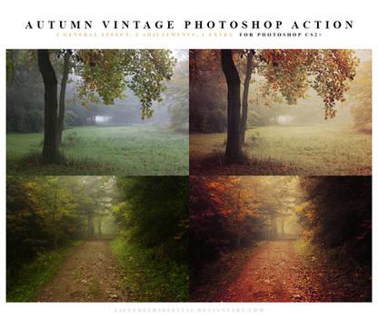 Autumn vintage Photoshop Action