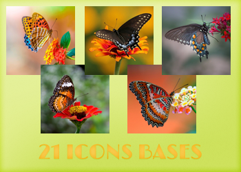 Icons Bases - Butterflies by Monikanarnia