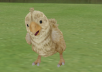 50,000 Page Views Gift - Baby Chocobo