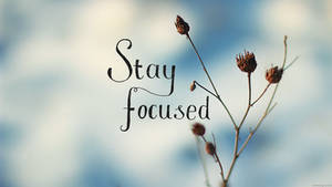 Stay Focused - Wallpaper