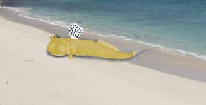 Seal Mudskipper