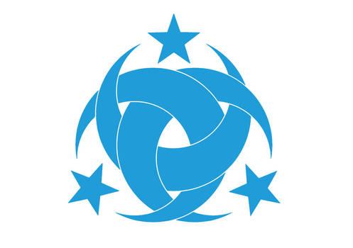 Teskilati Mahsusa Logo