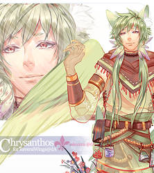 Custom Gif Design: Chrysanthos