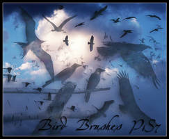 Birds by flordelys-stock