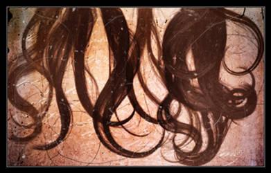 Hair Brushes I