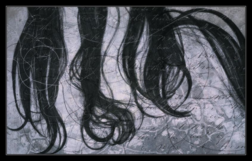 Hair Brushes II
