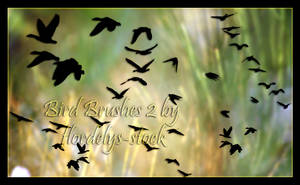 Bird Brushes II by flordelys-stock