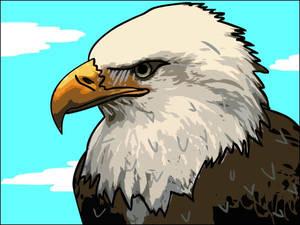 Eagle: Vector Graphic