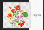 PNG PACK 019 By Weiting1122