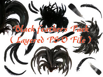 Black Feathers Pack .PSD file by the-night-bird