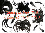 Black Feathers Pack .PSD file