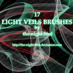 Light Veils Brushes...