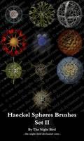 Haeckel Spheres Brushes 02