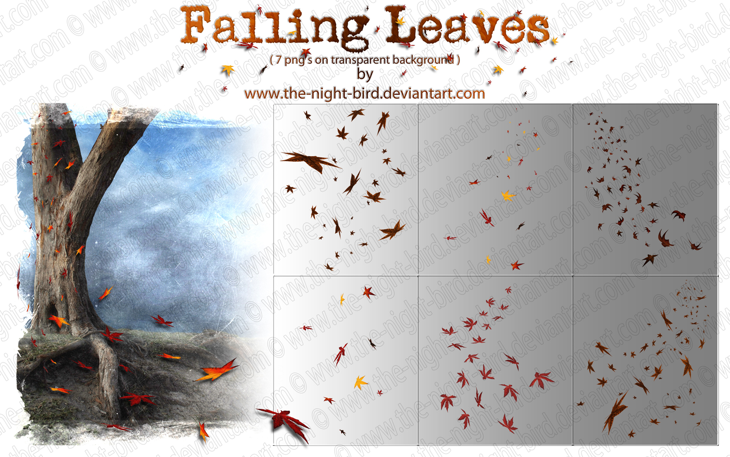 Falling Leaves PNG's