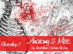Anatomy 2 Misc.