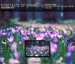 foretaste of spring - Wallpape