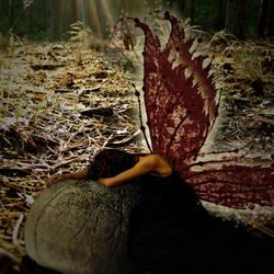 Fallen Fairy by shaiyakat