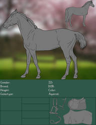 Horse Information Sheet by BlazedStables