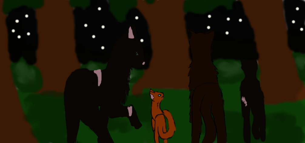 Travel to Thunderclan by losttaddy