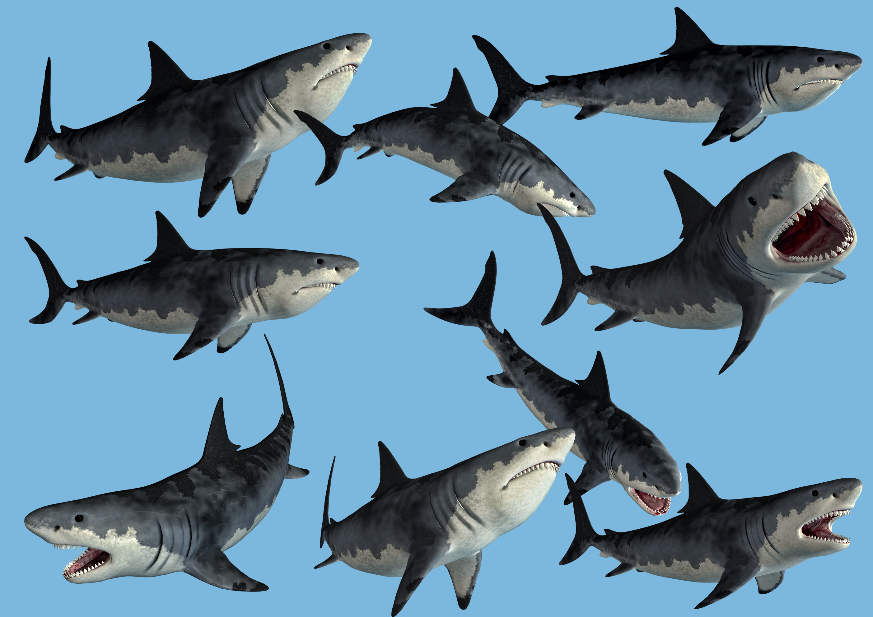 9 Monster Shark Stock PNG's