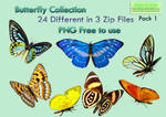 Butterfly Collection Stock Pack 1