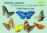 Butterfly Collection Stock Pack 3