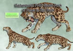 Sabertooth PNG Stock Pack