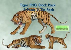 Tiger PNG Stock Pack by Roy3D