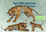 Tiger PNG Stock Pack