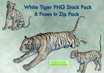 White Tiger PNG Stock Pack by Roy3D
