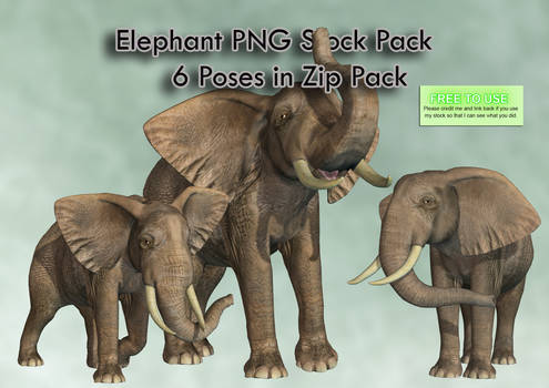 Elephant PNG Stock Pack
