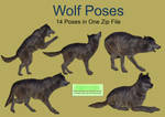 Wolf Poses PNG Stock Pack