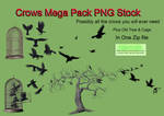 Crows Mega Pack PNG Stock