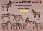 Bay Horse PNG Stock Pack