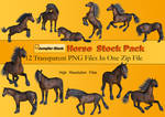 Horse PNG Stock Pack