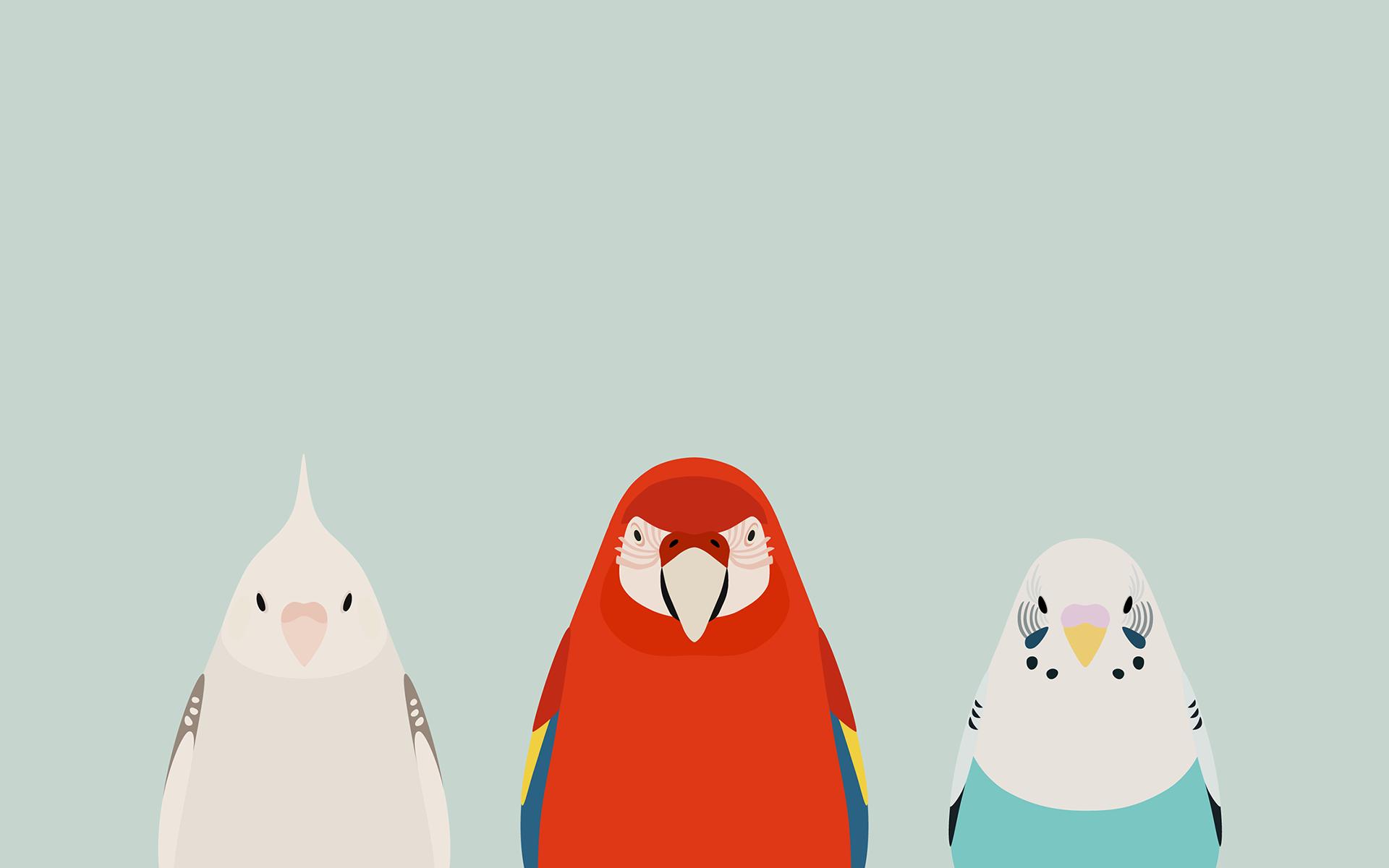 Three Birds - tori no iro by birnimal