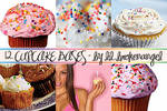 Bases - Cupcakes