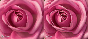 Freaky Detail - PS Action CS5 by Grayda