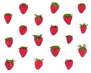 strawberry pattern by