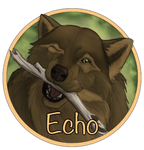 DOtW - Echo Medallion by L-Young