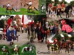 Medieval Riders pack