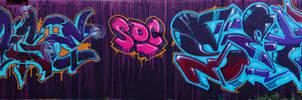 Sage_Setik01.03102010