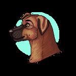 Pupper [g]